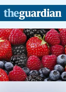TheGuardian-berrySales